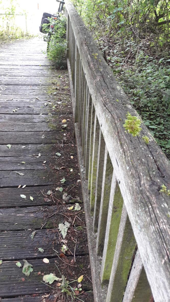 Katzenlochbachbrücke